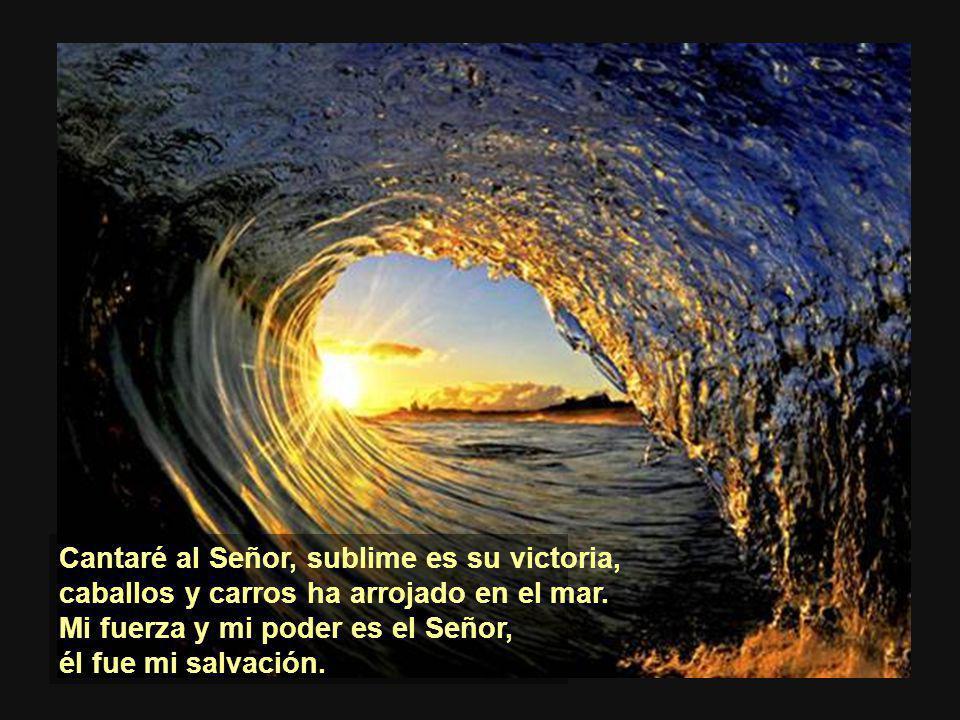 Cantaré al Señor, sublime es su victoria,
