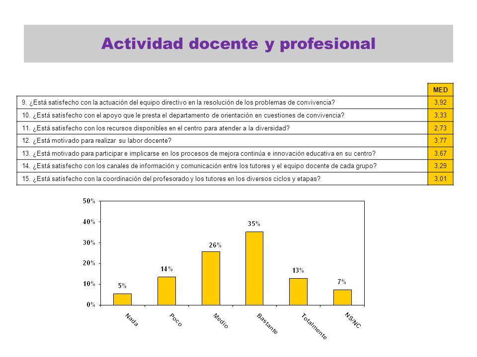 Actividad docente y profesional