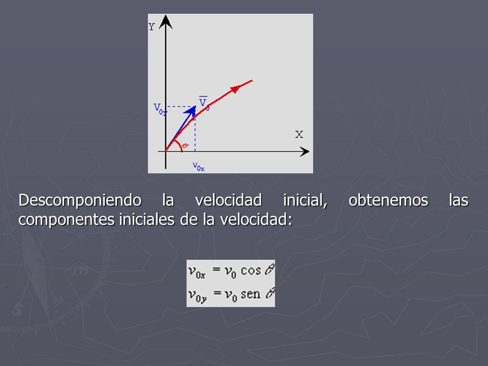 Descomponiendo la velocidad inicial, obtenemos las componentes iniciales de la velocidad: