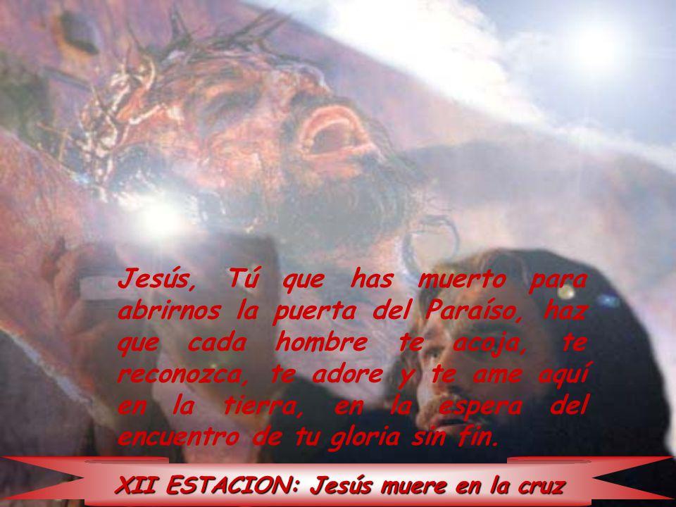 XII ESTACION: Jesús muere en la cruz