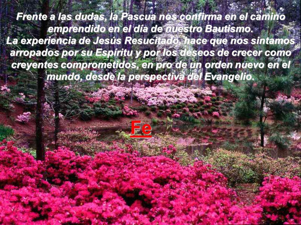 Frente a las dudas, la Pascua nos confirma en el camino emprendido en el día de nuestro Bautismo. La experiencia de Jesús Resucitado, hace que nos sintamos arropados por su Espíritu y por los deseos de crecer como creyentes comprometidos, en pro de un orden nuevo en el mundo, desde la perspectiva del Evangelio.