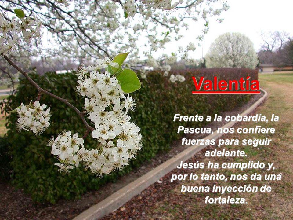 Valentía