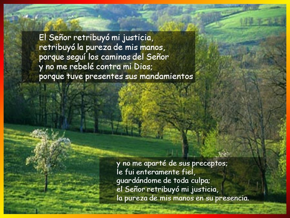 El Señor retribuyó mi justicia, retribuyó la pureza de mis manos, porque seguí los caminos del Señor y no me rebelé contra mi Dios; porque tuve presentes sus mandamientos