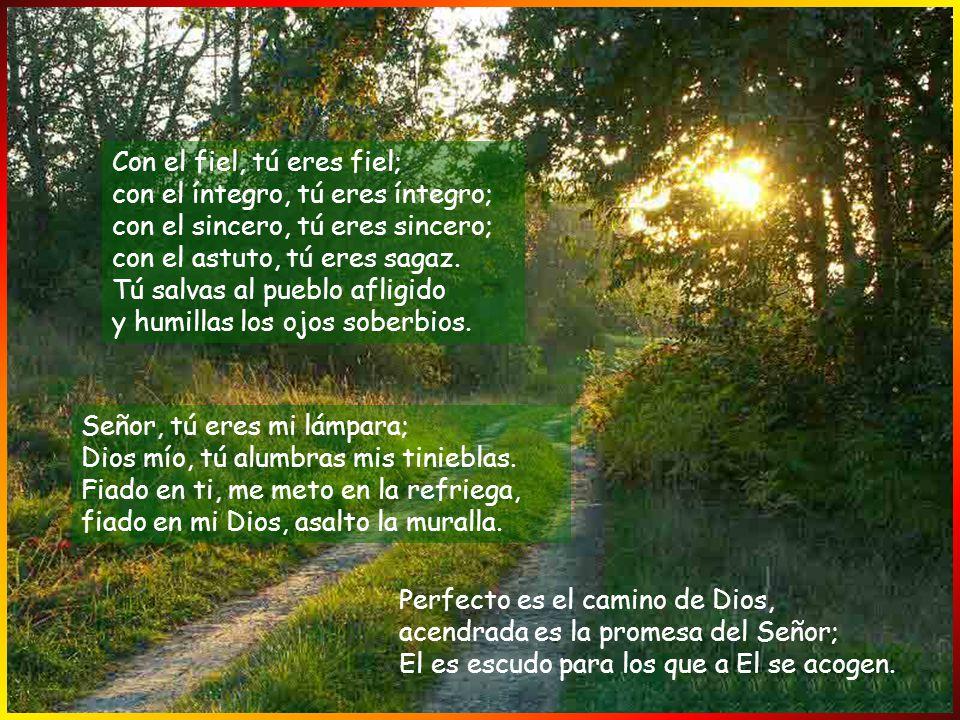 Con el fiel, tú eres fiel; con el íntegro, tú eres íntegro; con el sincero, tú eres sincero; con el astuto, tú eres sagaz. Tú salvas al pueblo afligido y humillas los ojos soberbios.