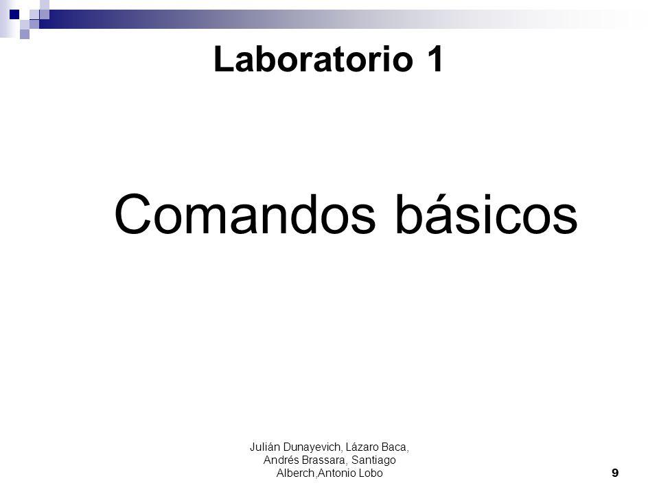 Comandos básicos Laboratorio 1