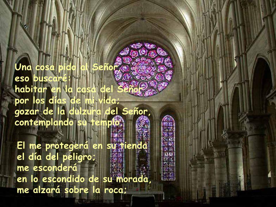 Una cosa pido al Señor, eso buscaré: habitar en la casa del Señor por los días de mi vida; gozar de la dulzura del Señor, contemplando su templo.