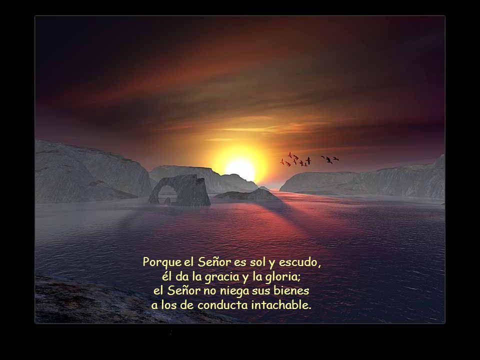 Porque el Señor es sol y escudo, él da la gracia y la gloria;