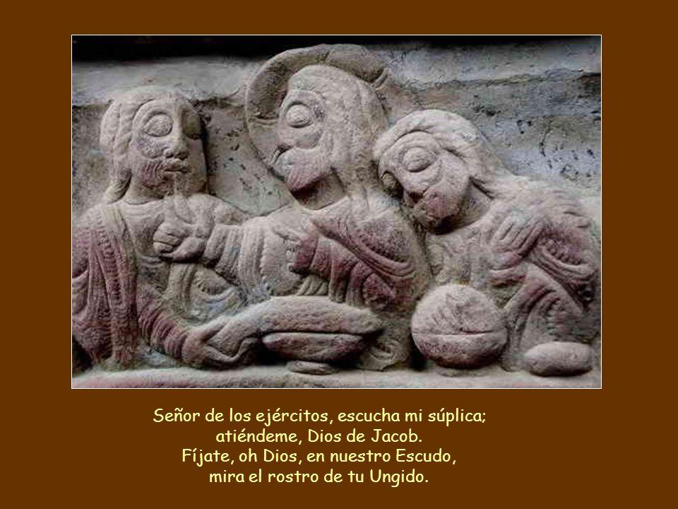 Señor de los ejércitos, escucha mi súplica; atiéndeme, Dios de Jacob.