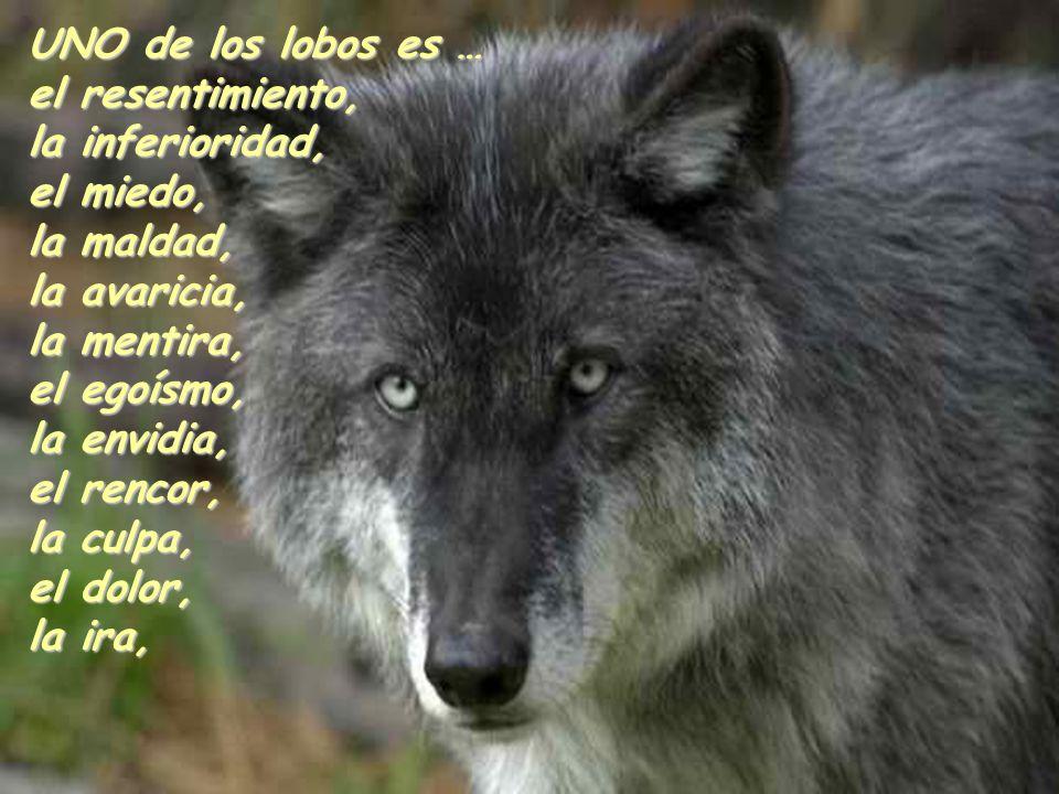 UNO de los lobos es …el resentimiento, la inferioridad, el miedo, la maldad, la avaricia, la mentira,