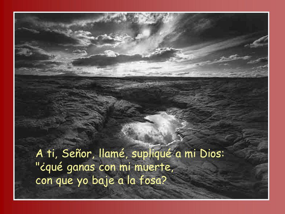 A ti, Señor, llamé, supliqué a mi Dios: ¿qué ganas con mi muerte, con que yo baje a la fosa