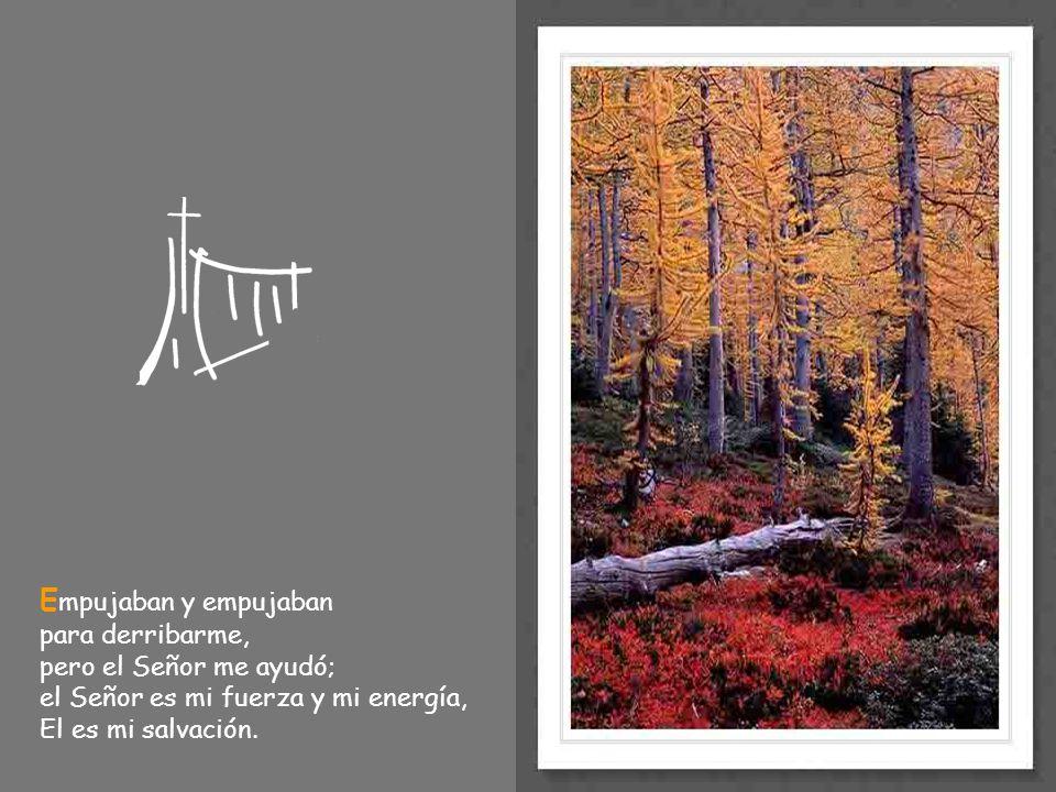 Empujaban y empujaban para derribarme, pero el Señor me ayudó; el Señor es mi fuerza y mi energía, El es mi salvación.