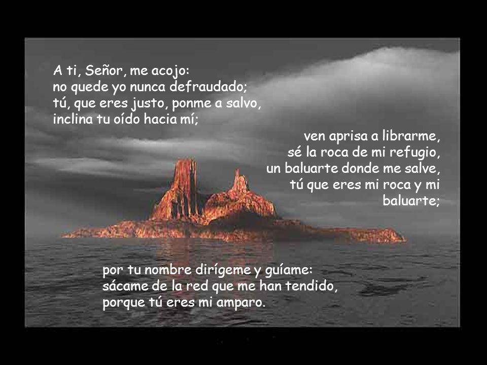 A ti, Señor, me acojo: no quede yo nunca defraudado; tú, que eres justo, ponme a salvo, inclina tu oído hacia mí;