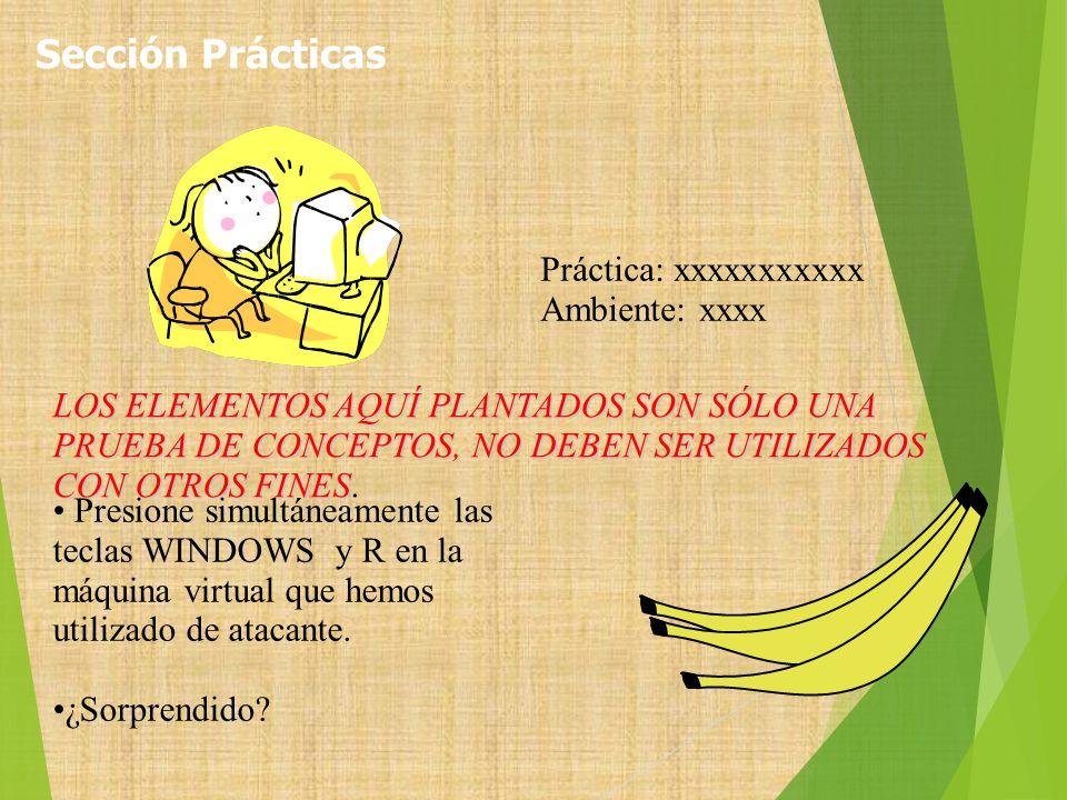 Sección Prácticas Práctica: xxxxxxxxxxx Ambiente: xxxx