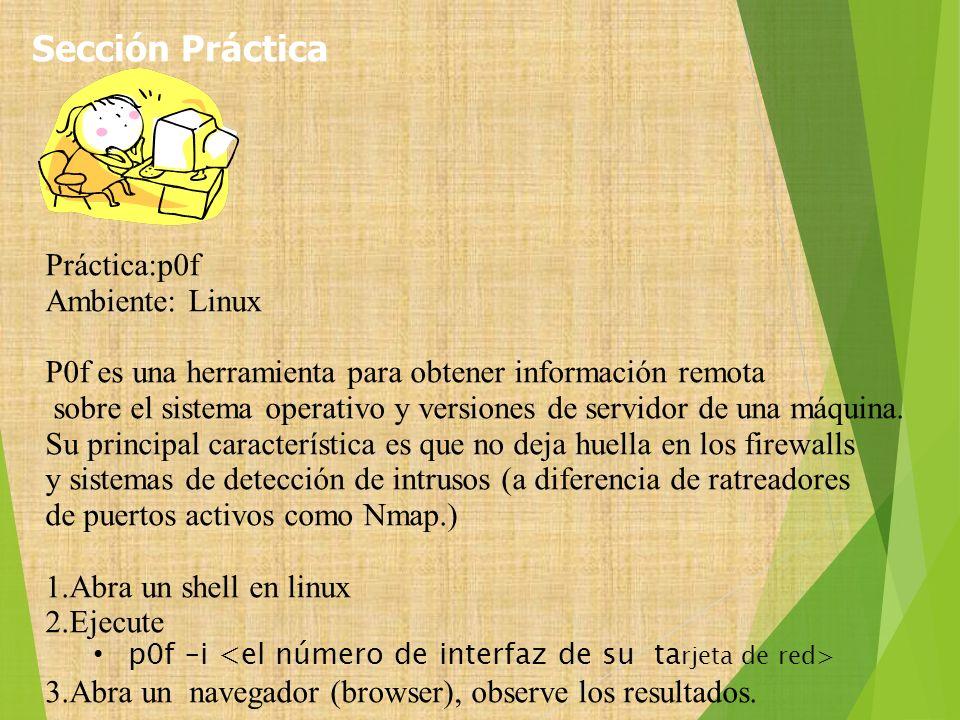 Sección Práctica Práctica:p0f Ambiente: Linux
