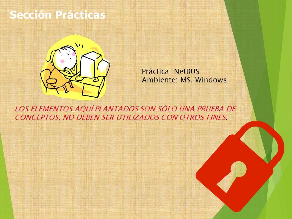 Sección Prácticas Práctica: NetBUS Ambiente: MS. Windows