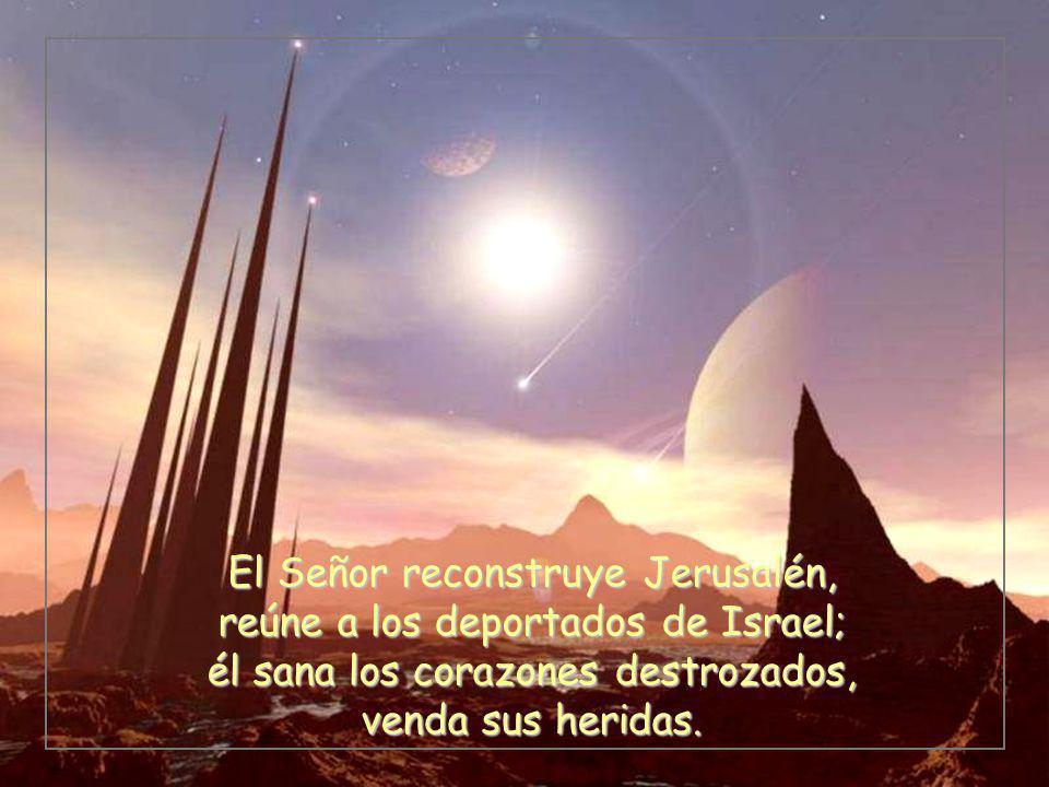 El Señor reconstruye Jerusalén, reúne a los deportados de Israel; él sana los corazones destrozados, venda sus heridas.