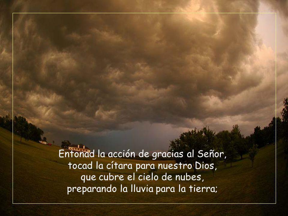 Entonad la acción de gracias al Señor, tocad la cítara para nuestro Dios, que cubre el cielo de nubes, preparando la lluvia para la tierra;
