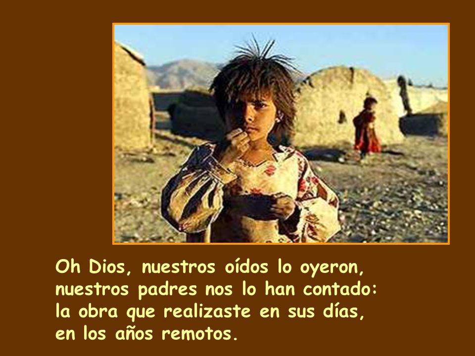 Oh Dios, nuestros oídos lo oyeron, nuestros padres nos lo han contado: la obra que realizaste en sus días, en los años remotos.