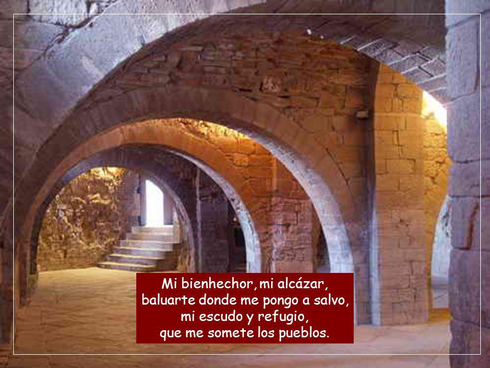 Mi bienhechor, mi alcázar, baluarte donde me pongo a salvo, mi escudo y refugio, que me somete los pueblos.