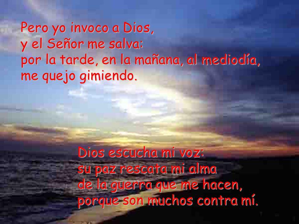Pero yo invoco a Dios, y el Señor me salva: por la tarde, en la mañana, al mediodía, me quejo gimiendo.