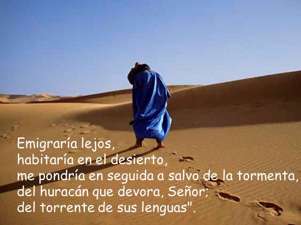 Emigraría lejos, habitaría en el desierto, me pondría en seguida a salvo de la tormenta, del huracán que devora, Señor;