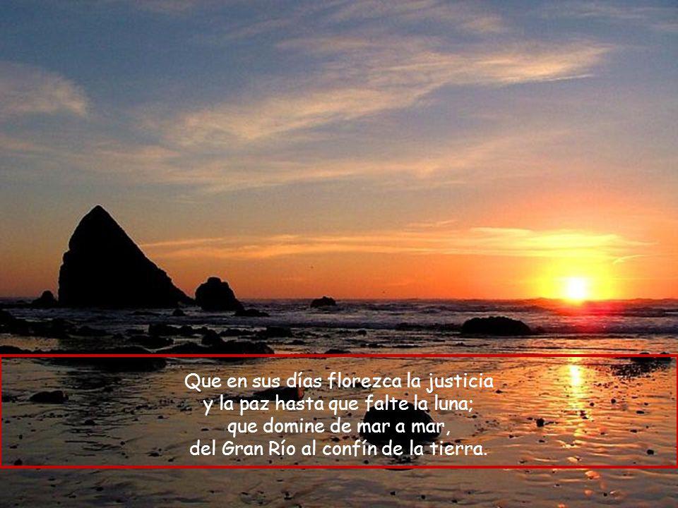 Que en sus días florezca la justicia y la paz hasta que falte la luna;