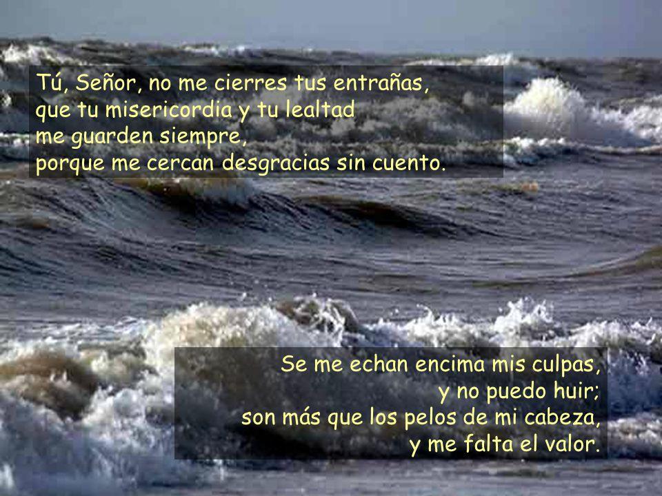 Tú, Señor, no me cierres tus entrañas, que tu misericordia y tu lealtad me guarden siempre, porque me cercan desgracias sin cuento.