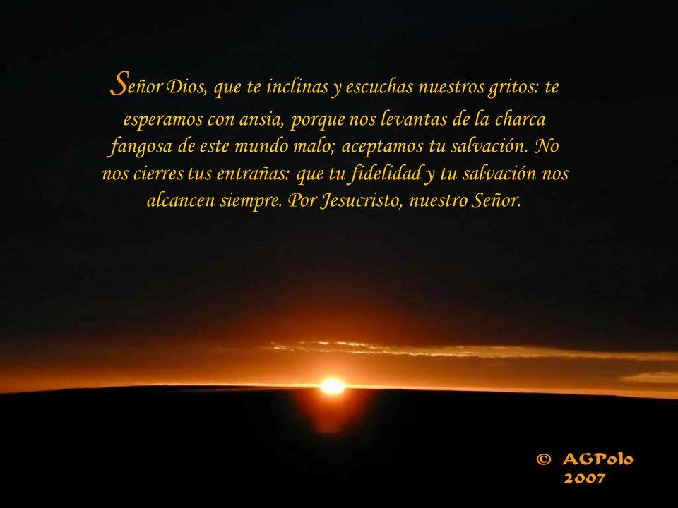 Señor Dios, que te inclinas y escuchas nuestros gritos: te esperamos con ansia, porque nos levantas de la charca fangosa de este mundo malo; aceptamos tu salvación.
