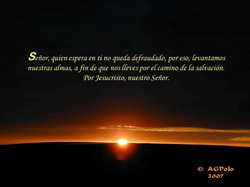 Señor, quien espera en ti no queda defraudado, por eso, levantamos nuestras almas, a fin de que nos lleves por el camino de la salvación.