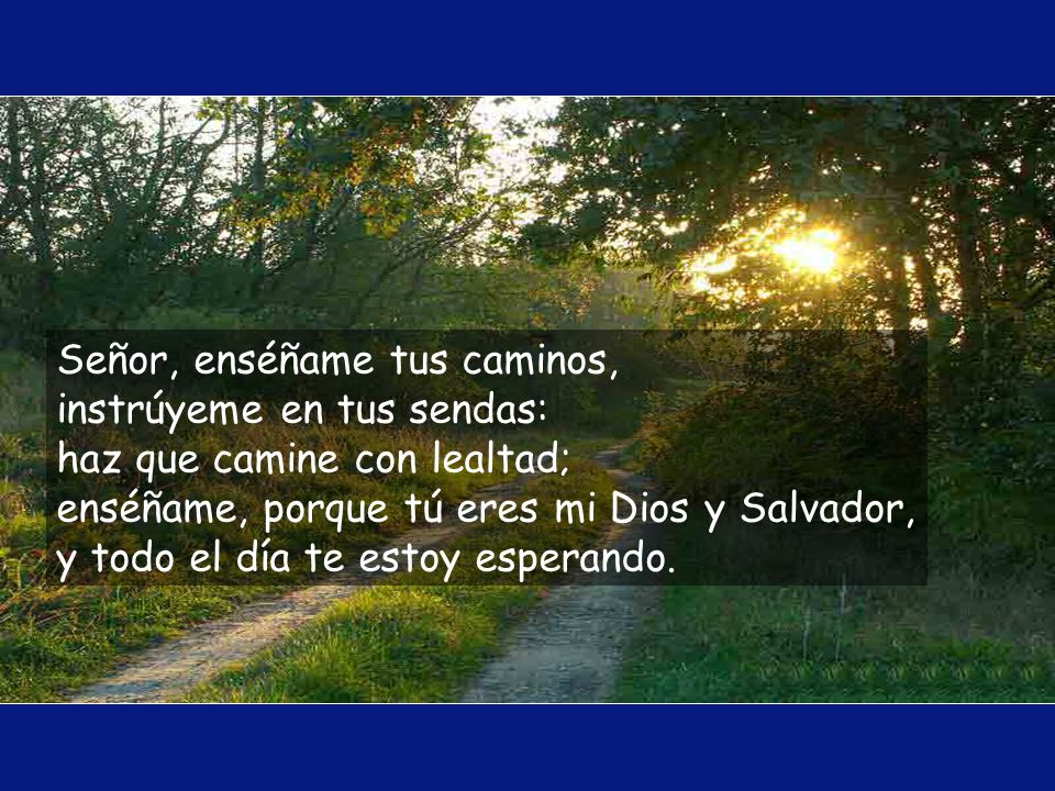 Señor, enséñame tus caminos, instrúyeme en tus sendas: haz que camine con lealtad; enséñame, porque tú eres mi Dios y Salvador, y todo el día te estoy esperando.