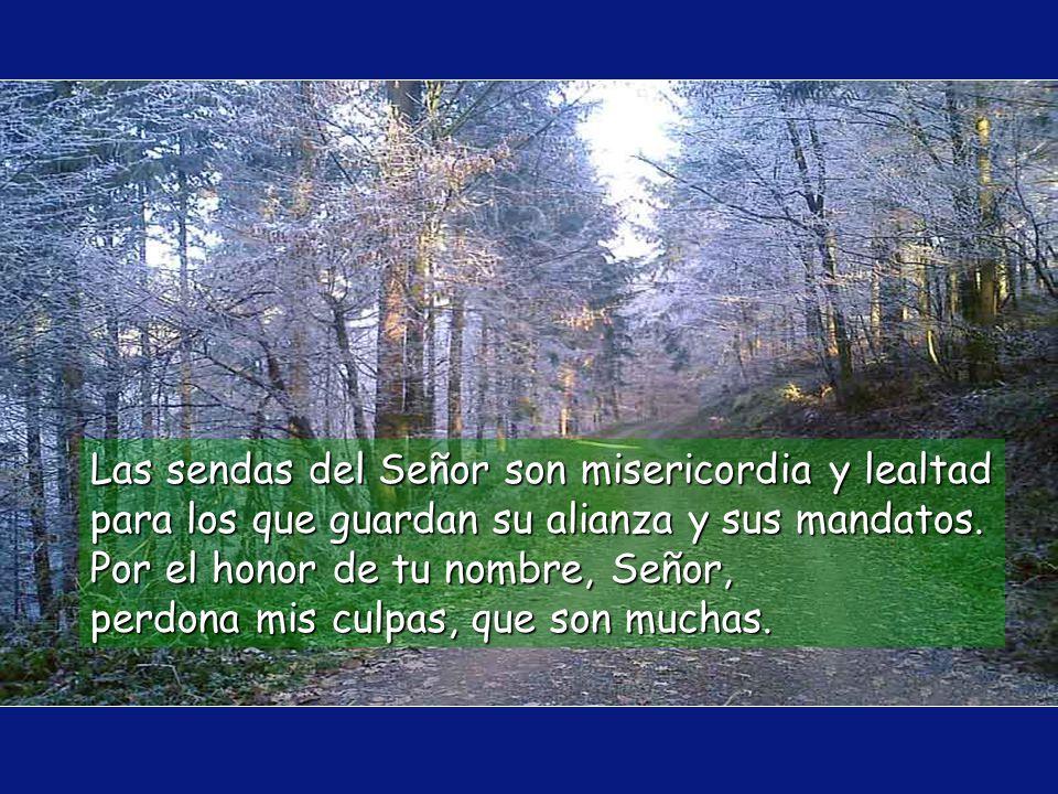 Las sendas del Señor son misericordia y lealtad para los que guardan su alianza y sus mandatos.