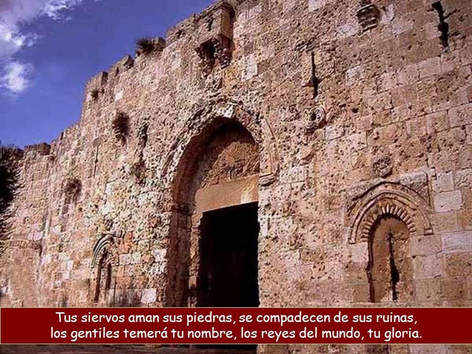 Tus siervos aman sus piedras, se compadecen de sus ruinas, los gentiles temerá tu nombre, los reyes del mundo, tu gloria.