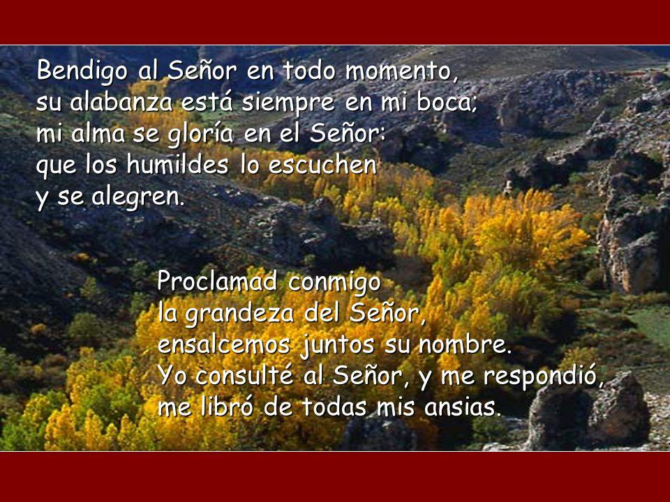Bendigo al Señor en todo momento, su alabanza está siempre en mi boca; mi alma se gloría en el Señor: que los humildes lo escuchen y se alegren.