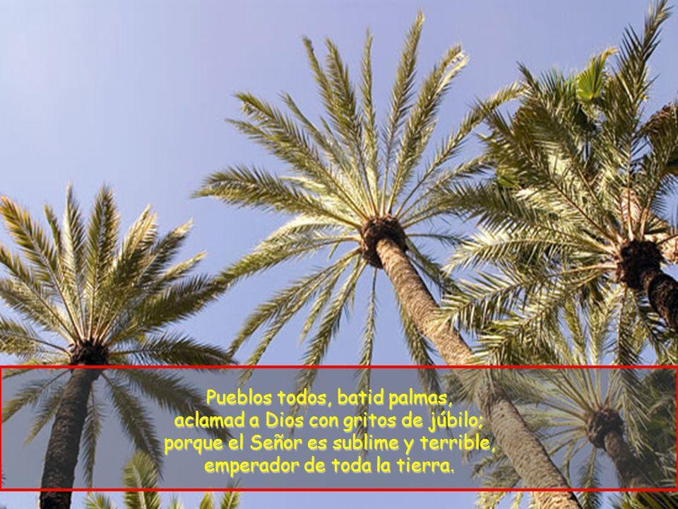 Pueblos todos, batid palmas, aclamad a Dios con gritos de júbilo; porque el Señor es sublime y terrible, emperador de toda la tierra.
