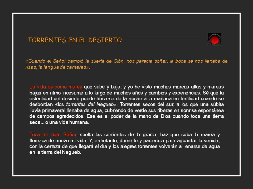 TORRENTES EN EL DESIERTO