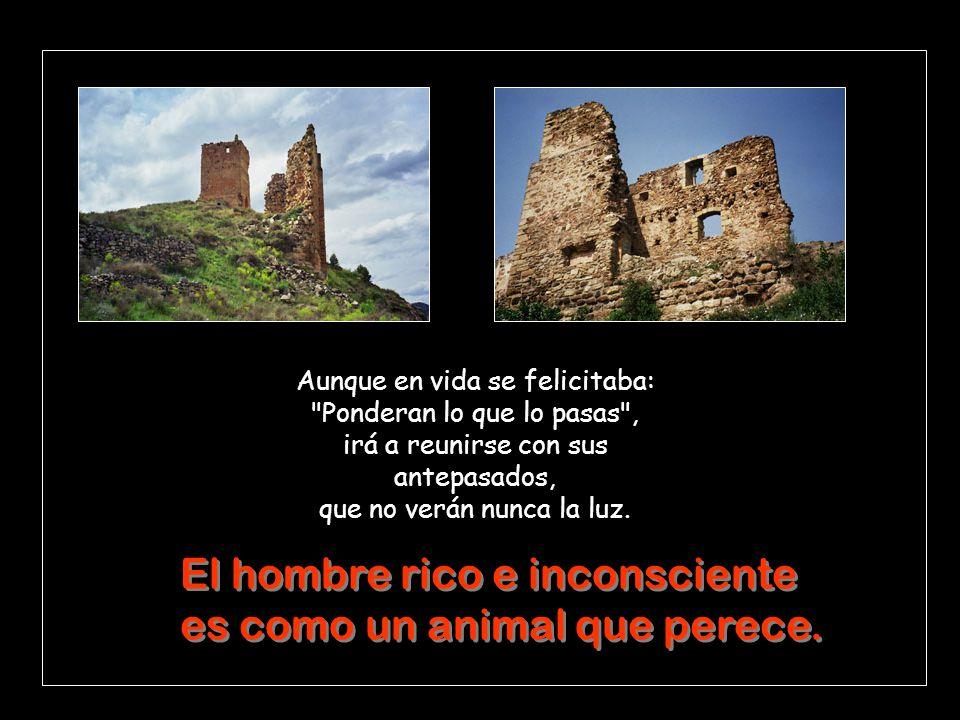 El hombre rico e inconsciente es como un animal que perece.