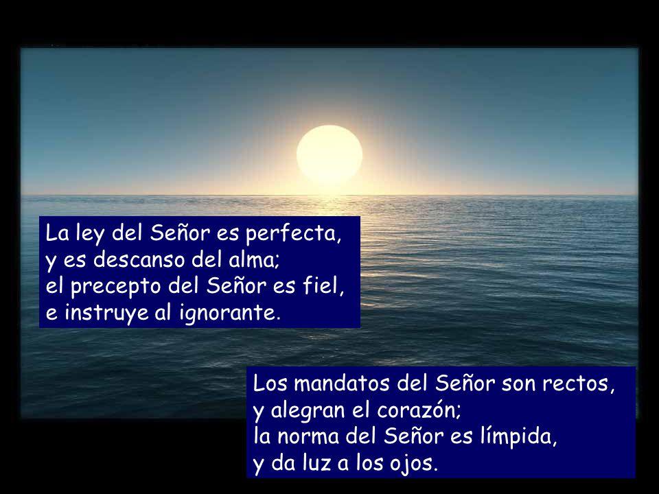 La ley del Señor es perfecta, y es descanso del alma; el precepto del Señor es fiel, e instruye al ignorante.
