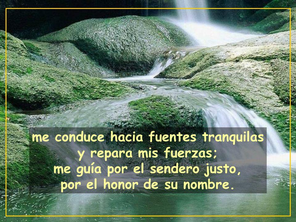 me conduce hacia fuentes tranquilas y repara mis fuerzas; me guía por el sendero justo, por el honor de su nombre.