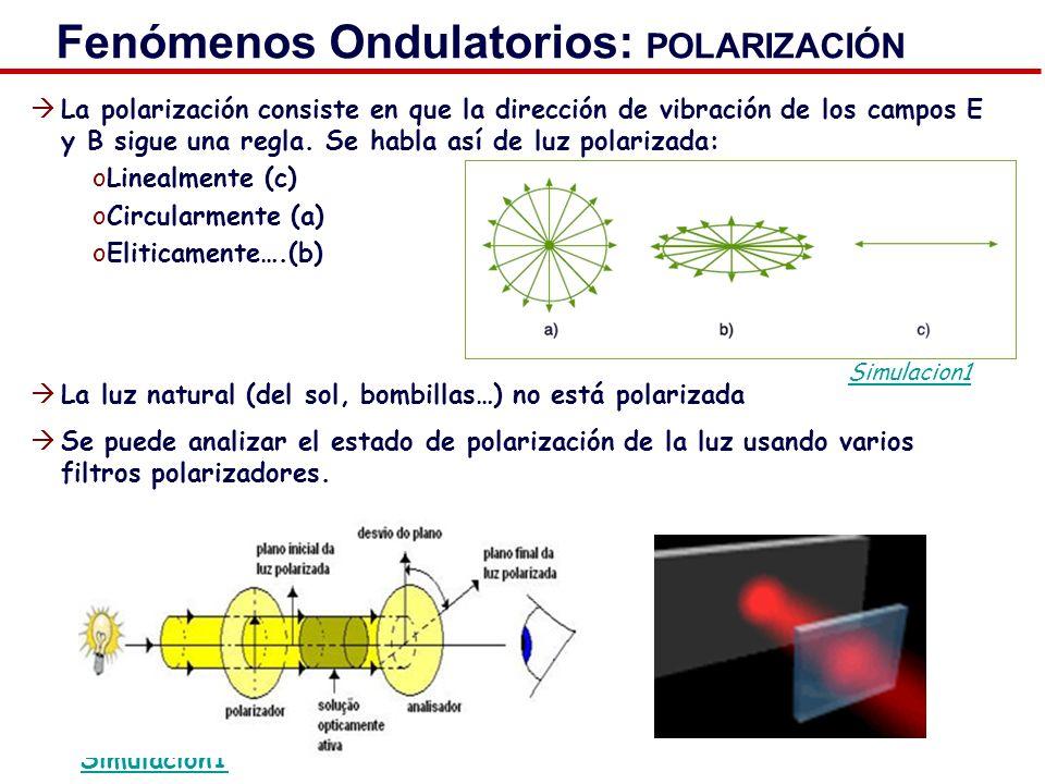 Fenómenos Ondulatorios: POLARIZACIÓN