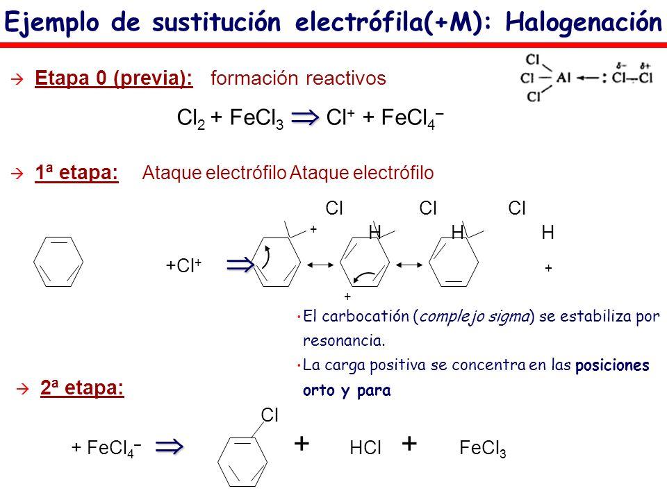 Ejemplo de sustitución electrófila(+M): Halogenación