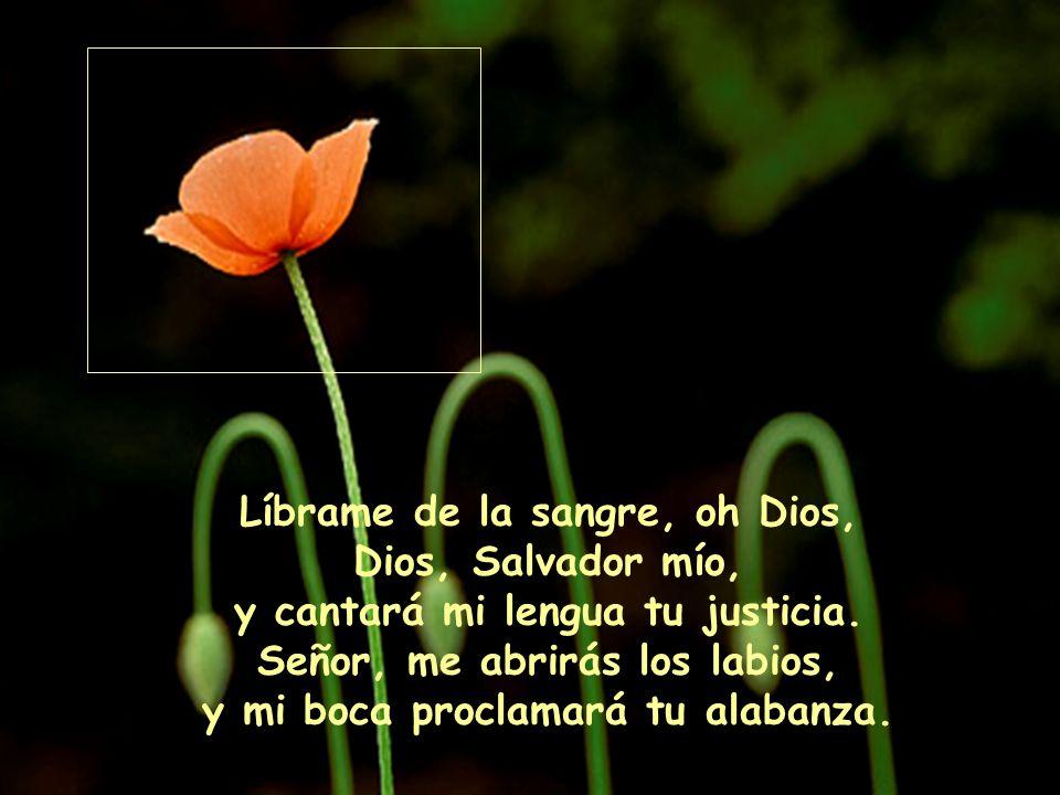 Líbrame de la sangre, oh Dios, Dios, Salvador mío, y cantará mi lengua tu justicia.