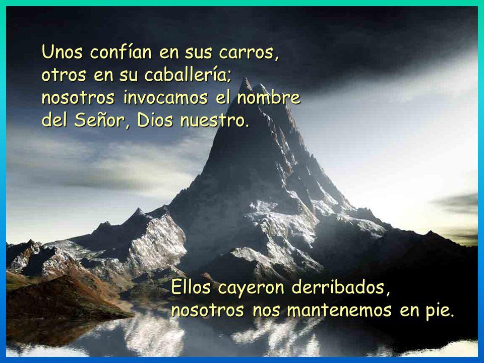 Unos confían en sus carros, otros en su caballería; nosotros invocamos el nombre del Señor, Dios nuestro.