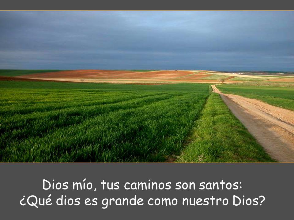 Dios mío, tus caminos son santos: