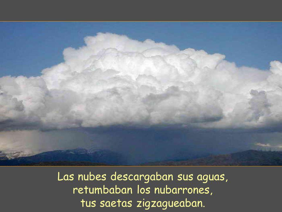Las nubes descargaban sus aguas, retumbaban los nubarrones,