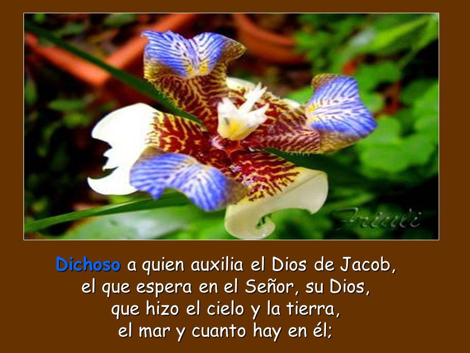 Dichoso a quien auxilia el Dios de Jacob, el que espera en el Señor, su Dios, que hizo el cielo y la tierra, el mar y cuanto hay en él;