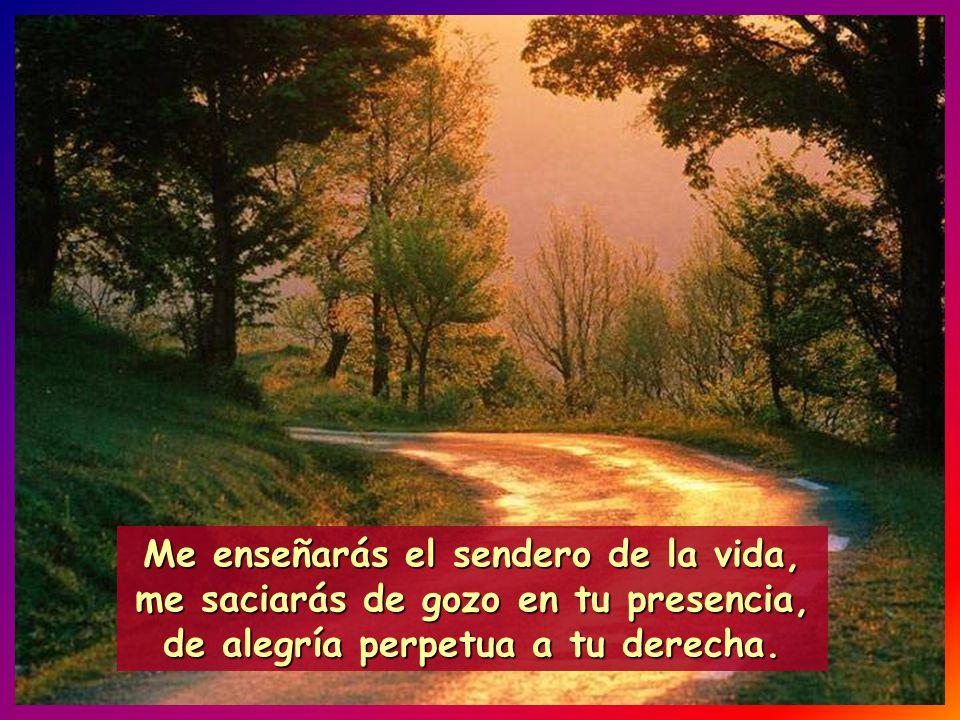 Me enseñarás el sendero de la vida, me saciarás de gozo en tu presencia, de alegría perpetua a tu derecha.