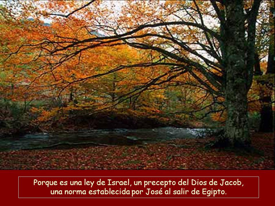 Porque es una ley de Israel, un precepto del Dios de Jacob, una norma establecida por José al salir de Egipto.