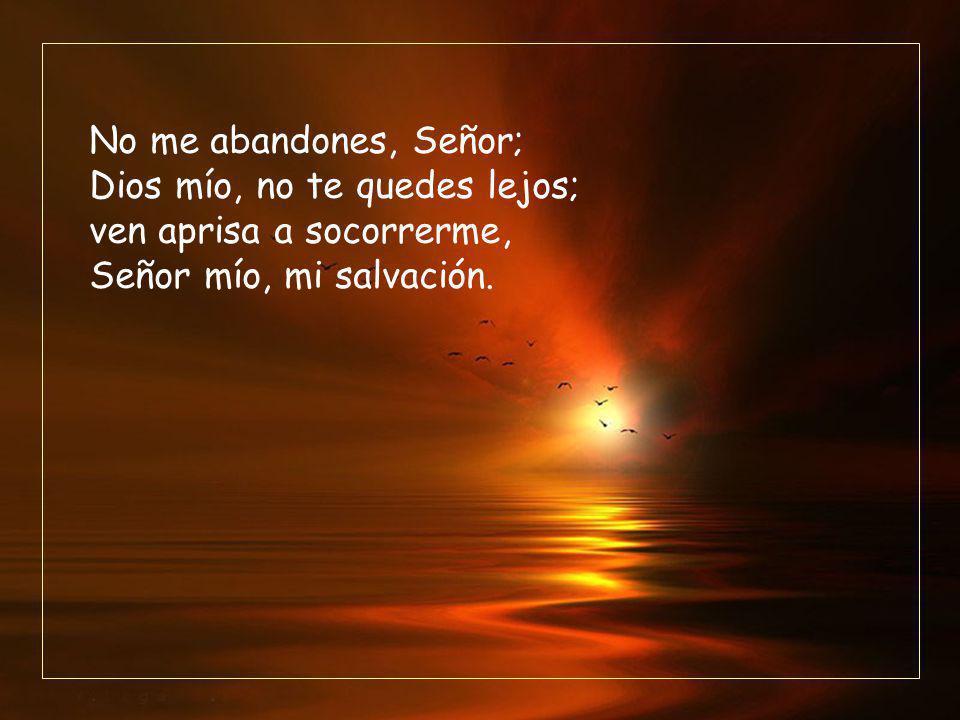 No me abandones, Señor; Dios mío, no te quedes lejos; ven aprisa a socorrerme, Señor mío, mi salvación.