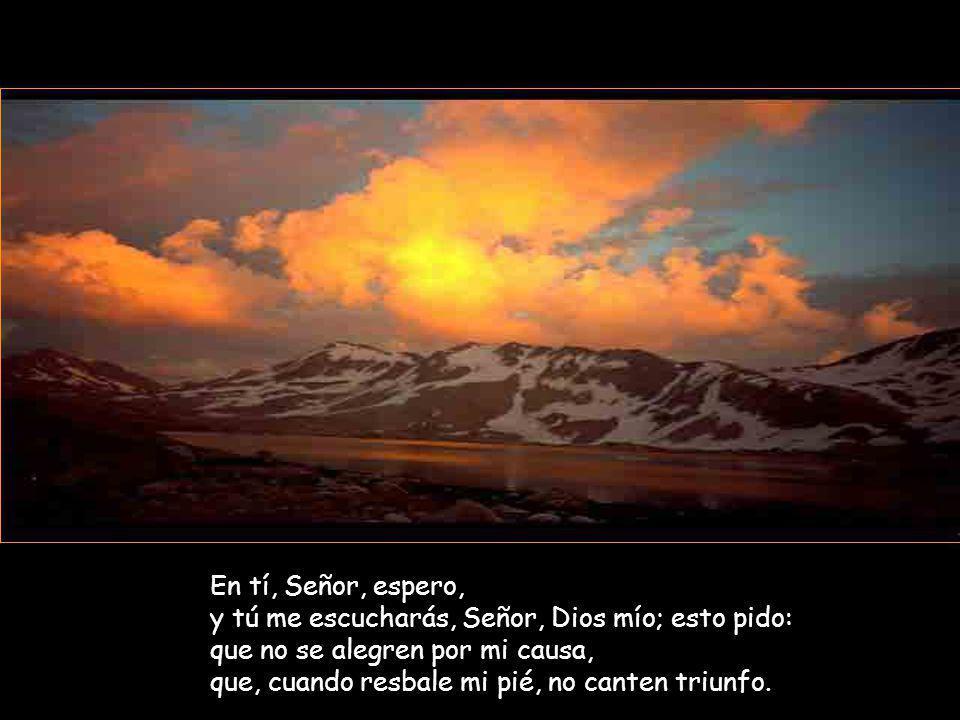 En tí, Señor, espero, y tú me escucharás, Señor, Dios mío; esto pido: que no se alegren por mi causa, que, cuando resbale mi pié, no canten triunfo.