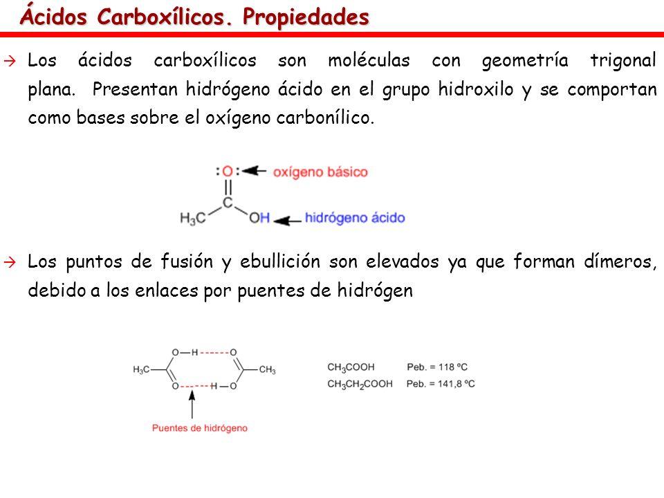 Ácidos Carboxílicos. Propiedades